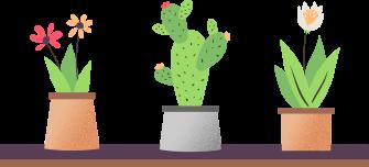 plant-image